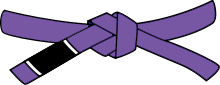 cinturón morado Yuyitsu